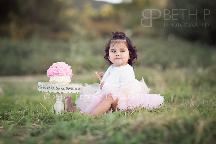 4-smash-cake-photographer-Temecula